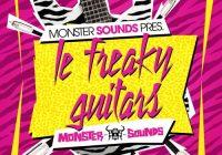 MS Le Freaky Guitars WAV REX