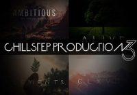 Freak Music - Chillstep Production 3 WAV MIDI PRESETS