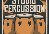 Studio Percussion Sample Pack WAV