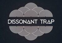 Bingoshakerz Dissonant Trap WAV