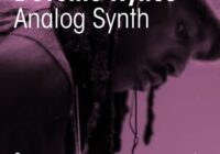 Devonte Hynes Analog Synth