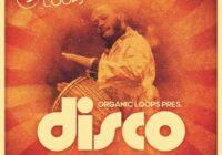 Organic Loops Disco Latino WAV