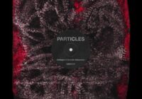 ES RED Particles WAV