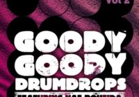 DrumDrops Goody Goody Drumdrops Vol 2 MULTiFORMAT