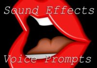 Vicious Vocal Sound Effects 15 (Voice Prompts Vol.3) WAV