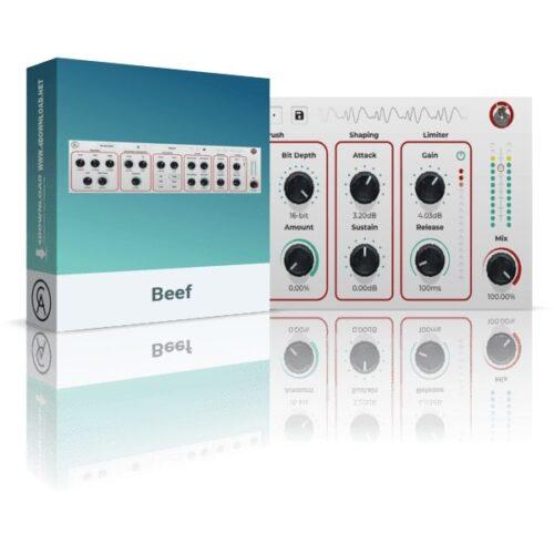 Caelum Audio Beef v1.0.1 VST3 AU AAX